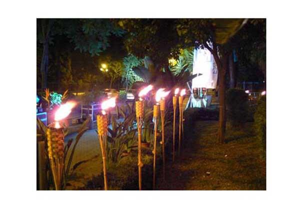 Iluminar el jardin con antorchas marketpalce iluminacion - Antorchas solares para jardin ...