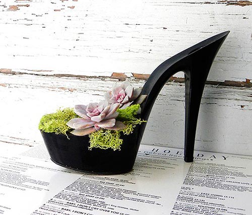 Hacer un macetero con un zapato