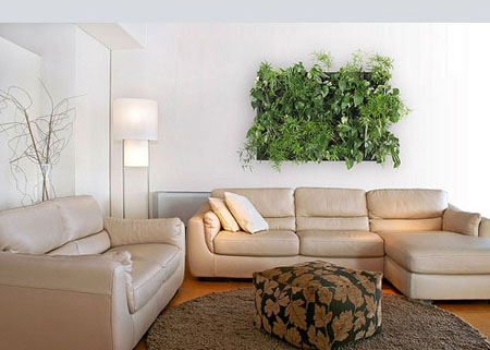 Decorar tu casa con plantas en la pared