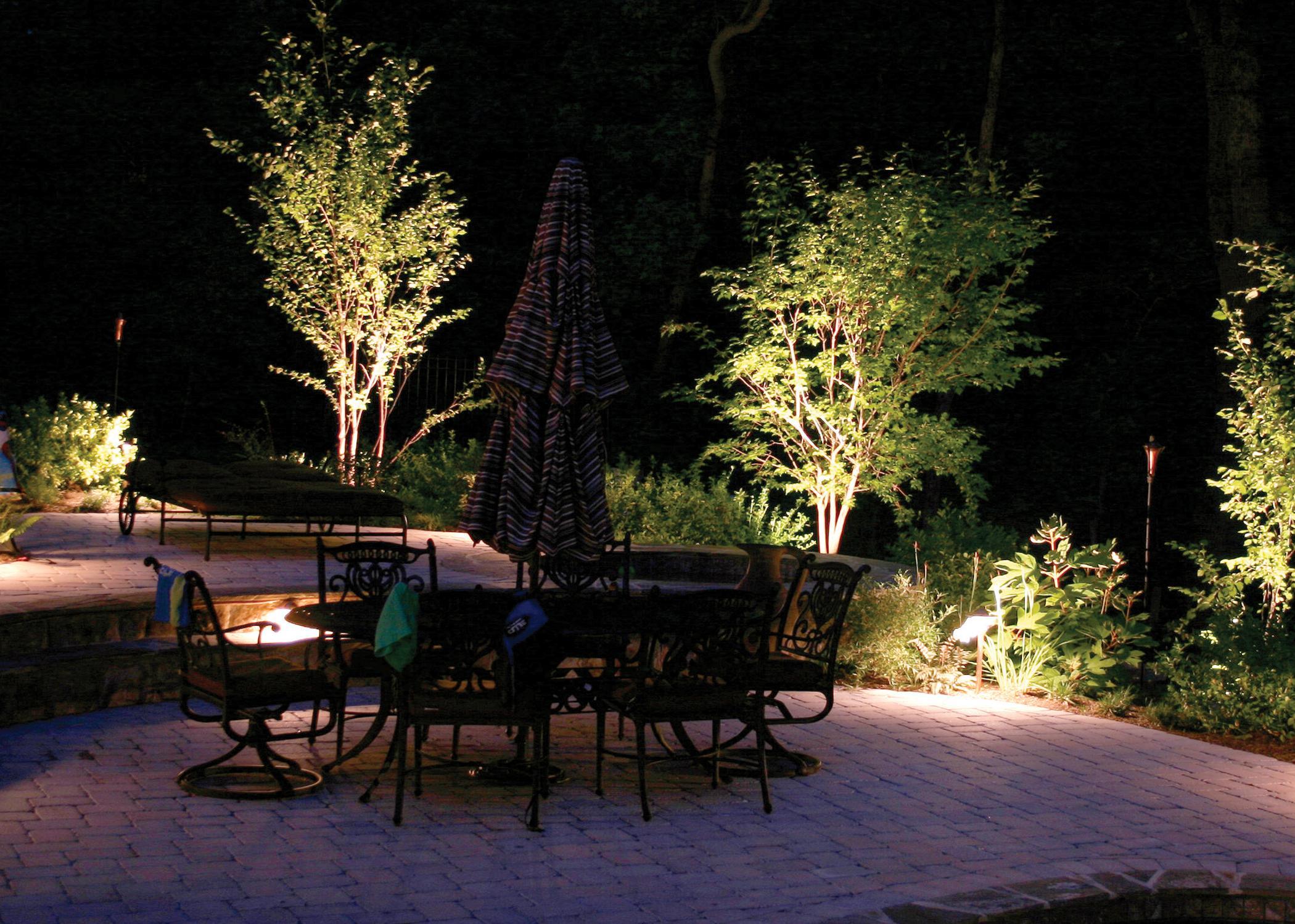 iluminar plantas y arboles jardin