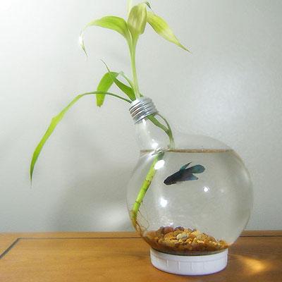 maceta-de-bombilla-reciclada