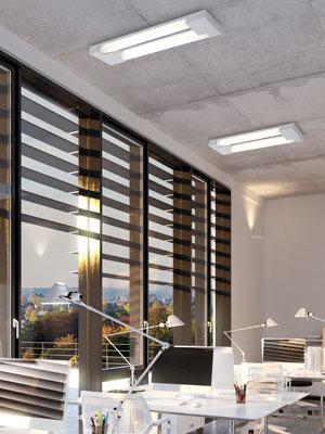 iluminacion-oficina-midava